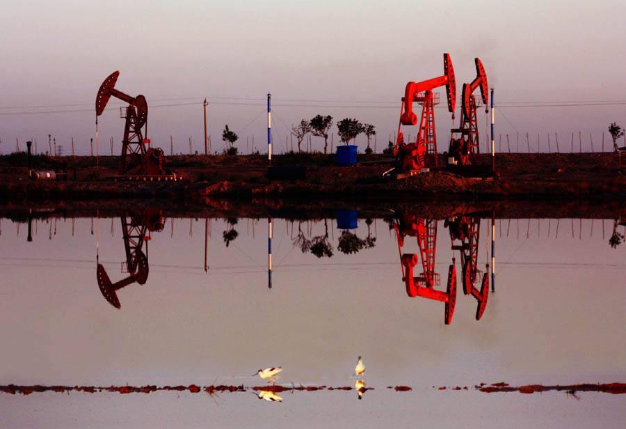 大港油田坚持环保先行走绿色发展之路