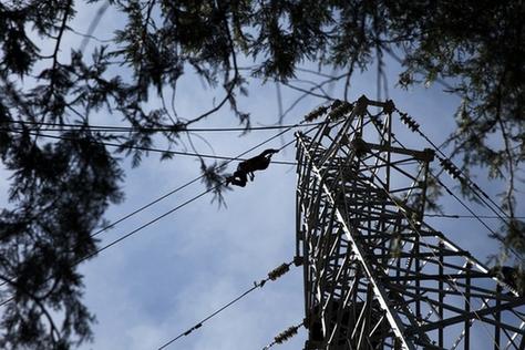 蓟州山区供电实现双电源