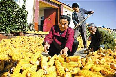 農民豐收節 好戲送到村