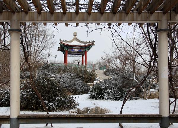 参与奖《河西珠江公园雪后》
