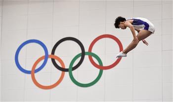 蹦床——全國錦標賽:男子青少年組個人賽況