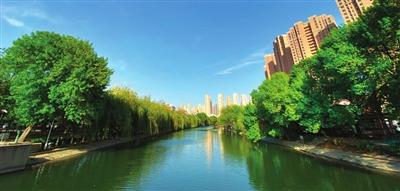 南運河畔 水清岸綠