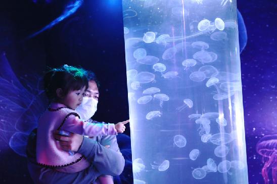 津城假期活動豐富多彩